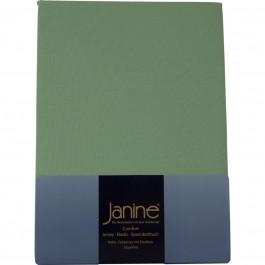 Spannbetttuch Janine Elastic Jersey 5002 lind