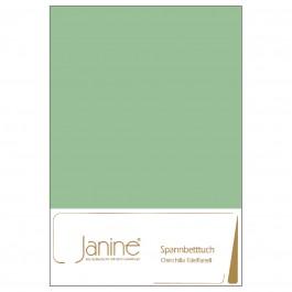 Spannbetttuch Janine Chinchilla-Edelflanell 7000 hellgrün
