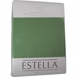 Spannbetttuch Estella Zwirn-Jersey 6900 alge